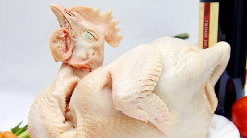 Chọn thịt gà sao cho thật ngon và cách để khi luộc sẽ dai và giòn hơn