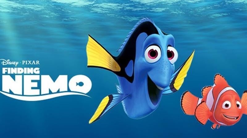 Đi tìm Nemo - Đi tìm Nemo