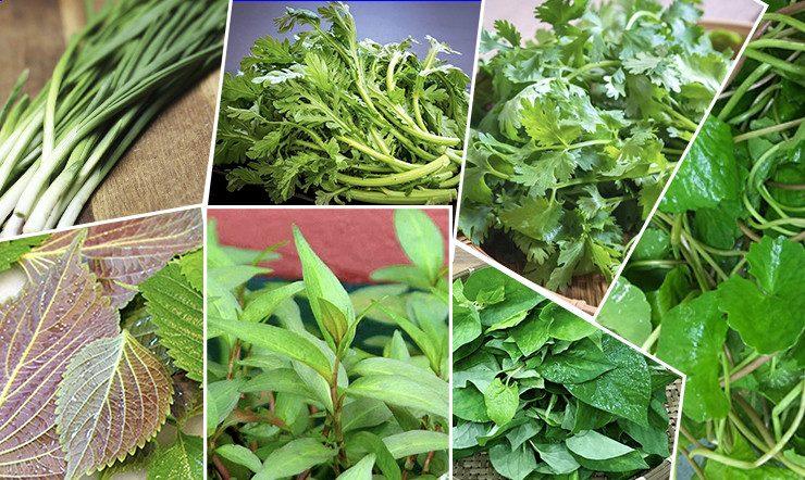 Những loại rau có mùi thơm nồng đã chia người Việt Nam thành hai phe