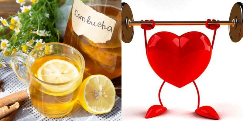 Lợi ích của Kombucha đối với sức khỏe?
