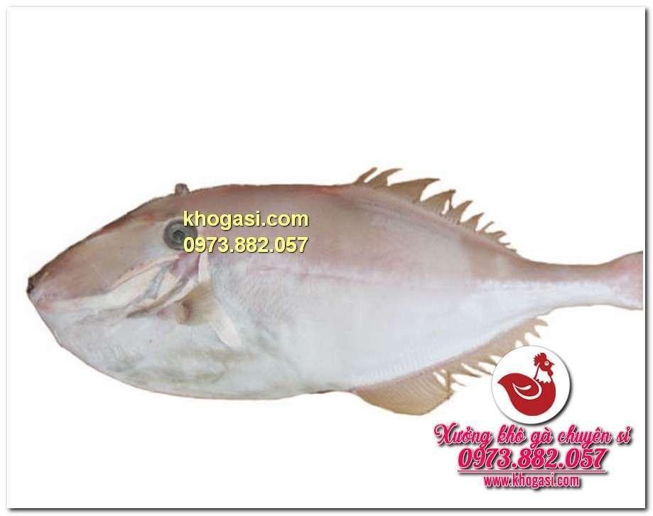cá bò da tươi