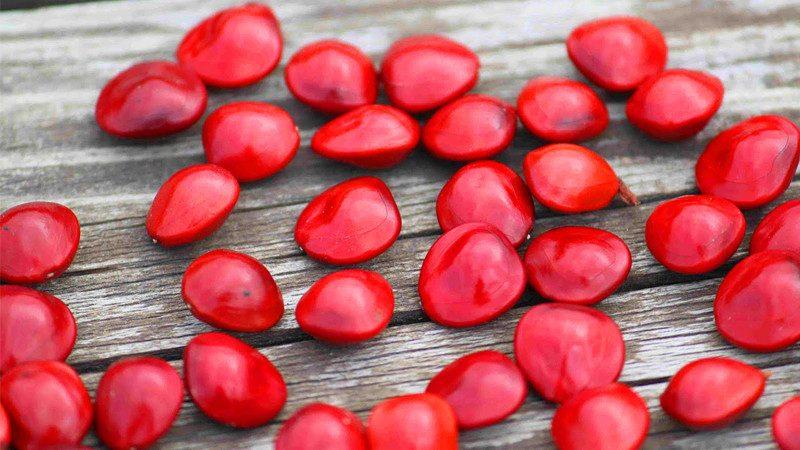 Phong tục ăn chè đậu đỏ trong ngày lễ Thất Tịch bắt nguồn từ đâu?